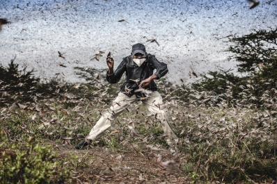 Fighting Locust Invasion in East Africa © Luis Tato, Spagna Henry Lenayasa, capo dell'insediamento di Archers Post, nella contea di Samburu, in Kenya, cerca di spaventare un enorme sciame di locuste che stanno devastando l'area di pascolo, il 24 aprile. Sciami di locuste hanno devastato vaste aree di terra nello stesso momento in cui l'epidemia di coronavirus aveva iniziato a far scarseggiare i mezzi di sussistenza. World Press Photo