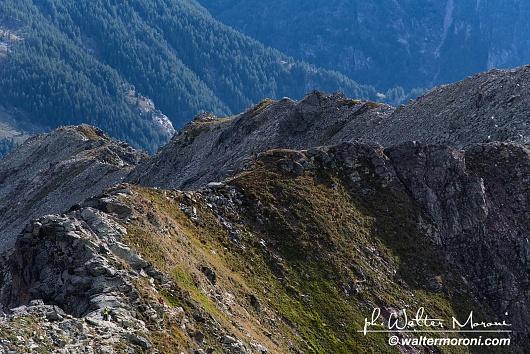 International Veia SkyRace 7 settembre 2019 - Passaggio Cima Verosso - Foto Federico M.