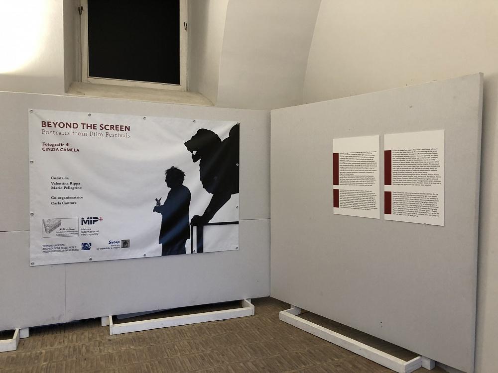 Dal 9 al 20 maggio - Cinzia Camela | Beyond the screen